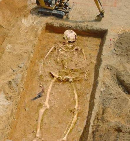 Giant Human Skeleton H...