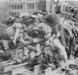 Pile of German Corpses