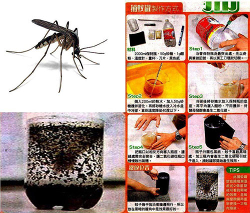 How To Keep Mosquitoes Away From House And Television